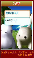 20070319-5.png