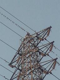 20071219-01.JPG