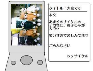 20080826-02.jpg
