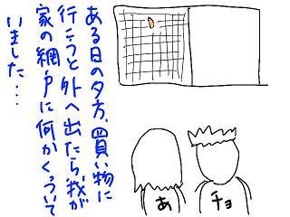 20080904-01.jpg