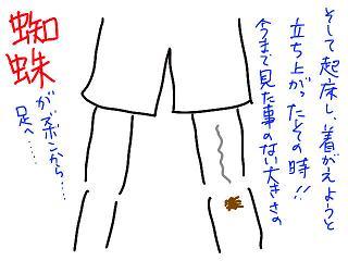 20080904-10.jpg