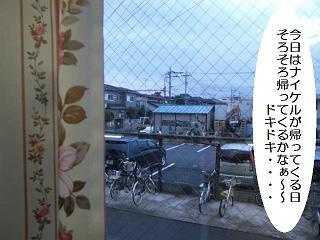 20080927-01.JPG