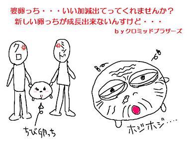 20081111-01.jpg