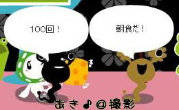 shion.JPG